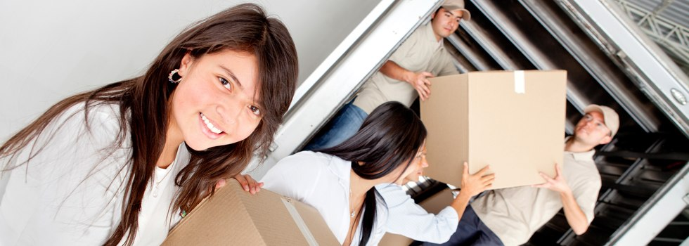 Professional Removalists Alawoona